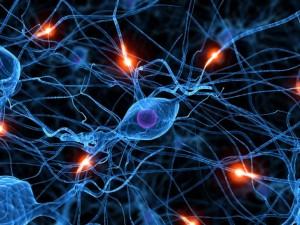 Sinapses neuronais no cérebro