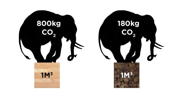 Carbono Retido-35.jpg