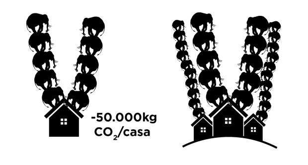 Carbono Retido-36.jpg